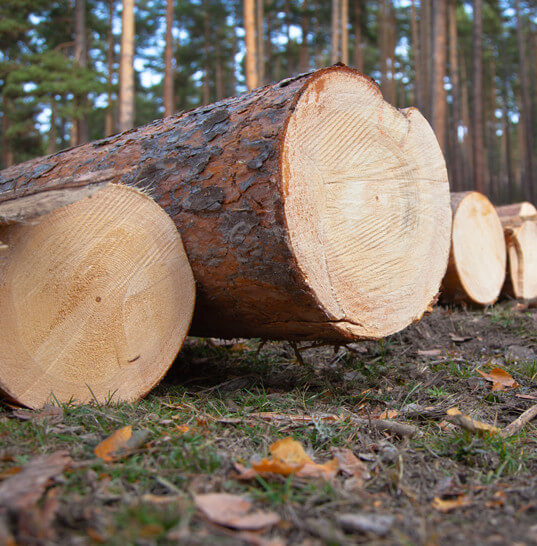 Constructeur maison bois Jura Chauvin Construction Bois # Chauvin Construction Bois